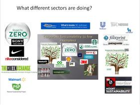 What companies are doing